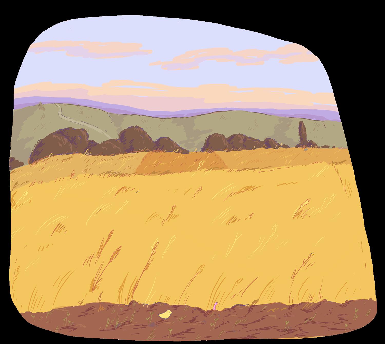 Tout autour des moulins
